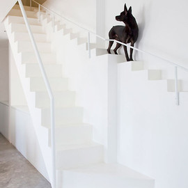 07beach - stairs for dogs