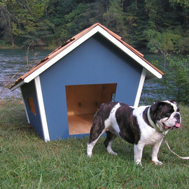 The Cape Dog House