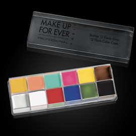 MAKE UP FOR EVER - 12フラッシュカラーケース