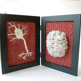 aKNITomy - Knitted Neuroscience