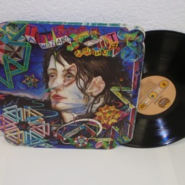 Todd Rundgren - A Wizard, A True Star (Record: Bearsville BR 2133 U.S.early press die-cut sleeve)