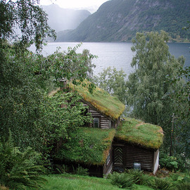 Alun W - Living Roof Cabin In Norway