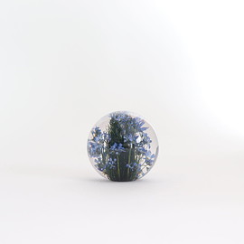 Landscape Products|UNISEX - HAFOD GRANGE - PAPERWEIGHT S #FORGET ME NOT [HGPW1-006]