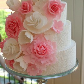 Francisca Neves - Wedding Cake