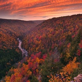 West Virginia - Blackwater Canyon