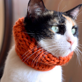 theLOVEstitch - the Penelope // knitted scarf chunky cowl for cats