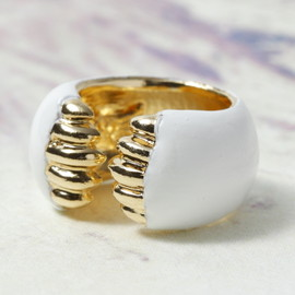 snowy mountains ring