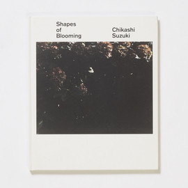 鈴木親 - Shapes of Blooming