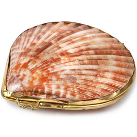 the evoltion store - shell coin purse