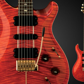 PAUL REED SMITH GUITARS - Private Stock #1489 513