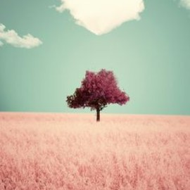 BLUE: PINK: heart, cloud, tree