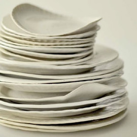 virginia sin - Porcelain paper plates