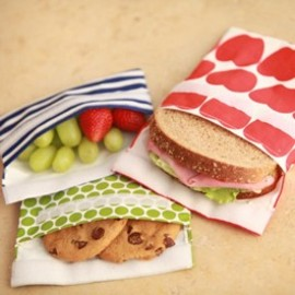 Lunchskins -  Reusable Sandwich and Snack Bags
