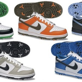 NIKE - Dunk NG Golf Shoe