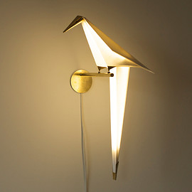 Umut Yamac - The Perch Light