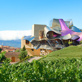 Basque, Spain - Hotel Marqués de Riscal, a Luxury Collection Hotel, Elciego