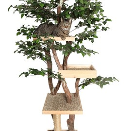 Etsy - 猫のツリーハウス Sycamore Cat Pet Tree House