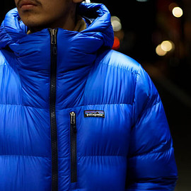 Patagonia - fit roy down parka