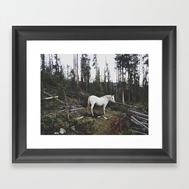 Kevin Russ - The White Horse Framed Art Print