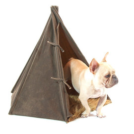 the LOFT Pet Home