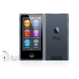 Apple - iPod nano (16GB/Black)