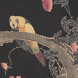 Parrot standing on a flowering rose bush, circa 1900, Japan. Artist Itô Jakuchû