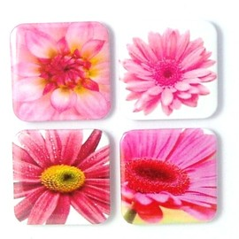 Luulla - Magnets - Pretty in Pink - 4 fridge magnets