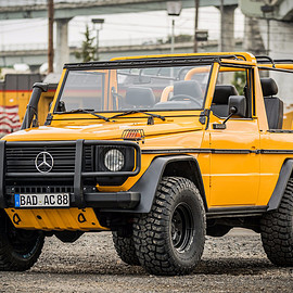 Mercedes-Benz - Wolf 250GD