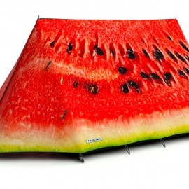 fieldcandy - What a melon