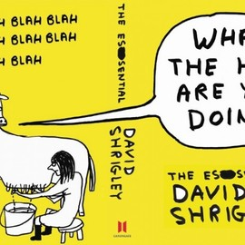 David Shrigley - What the Hell are You Doing?: The Essential David Shrigley