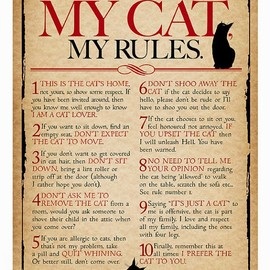 Mad Old Cat Lady - My House, My Cat, My Rules