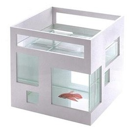 House Within A House fishbowl