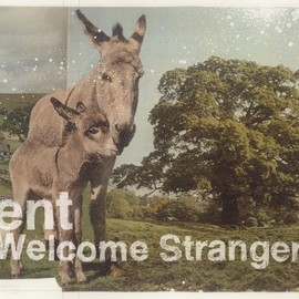 ent - Welcome Stranger