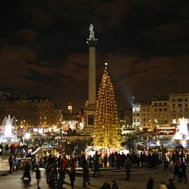 Trafalgar Square, London - Christmas Tree