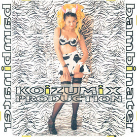 KOIZUMIX PRODUCTION Ⅳ 89-99 VINYL COLLECTION