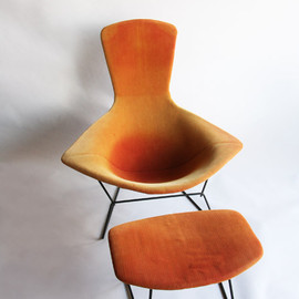 Knoll - Bird Chair & Ottoman by Harry Bertoia