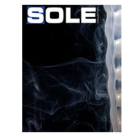 SOLE COLLECTOR - ISSUE 31