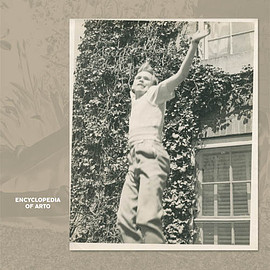 ARTO LINDSAY - THE ENCYCLOPEDIA OF ARTO LINDSAY