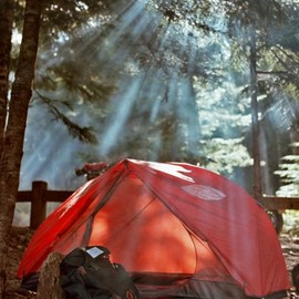 A tent in dapled forest sun.