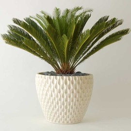"Vessel - Architectural Pottery ""Pinapple Planter"" by David Cresse"