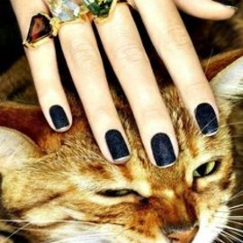 matte navy polish & cat