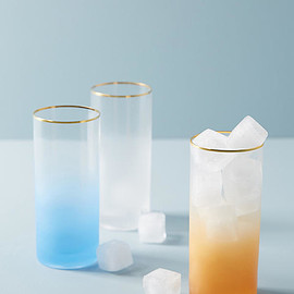 Anthropologie - Dobra Highball Glass