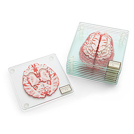 ThinkGeek - Brain Specimen Coasters