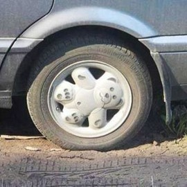 Teddy Bear Wheel