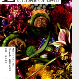 東信 - Encyclopedia of Flowers―植物図鑑