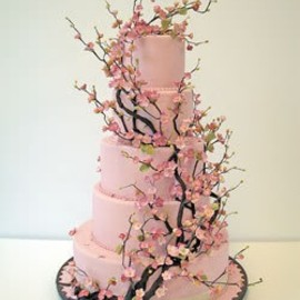 flower - Cherry Blossom Cake