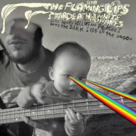 The Flaming Lips - Dark Side of the Moon [12 inch Analog]