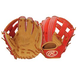 Rawlings - NISHIOKA MODEL