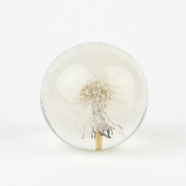PAPER WEIGHTS-S (Mixed Flora)