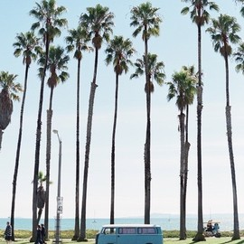 California - VW Van under the palm trees